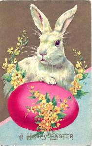 Кролик, несущий яйца