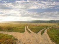 Хочу идти своим путем