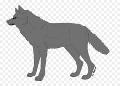 «Нам не страшен серый волк…»